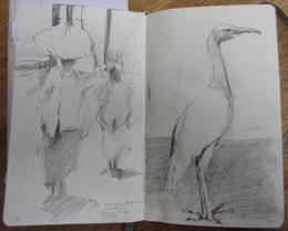 Sri Lankan sketches